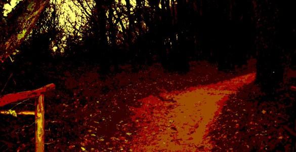 Blutweg